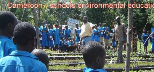 Schools environmental education programme