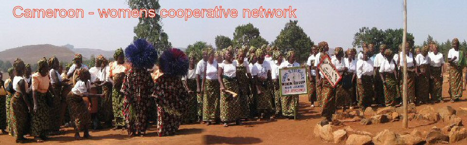 camwp-womens-cooperatives
