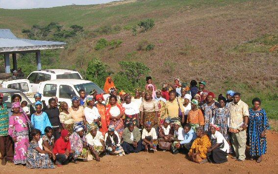 cameroon.cooperatives.biofarm