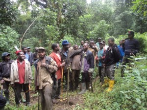 cameroon.camgew. Reforestation in Oku, NW region 2015