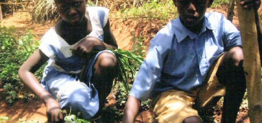 cameroon.shumas. Environmental education2