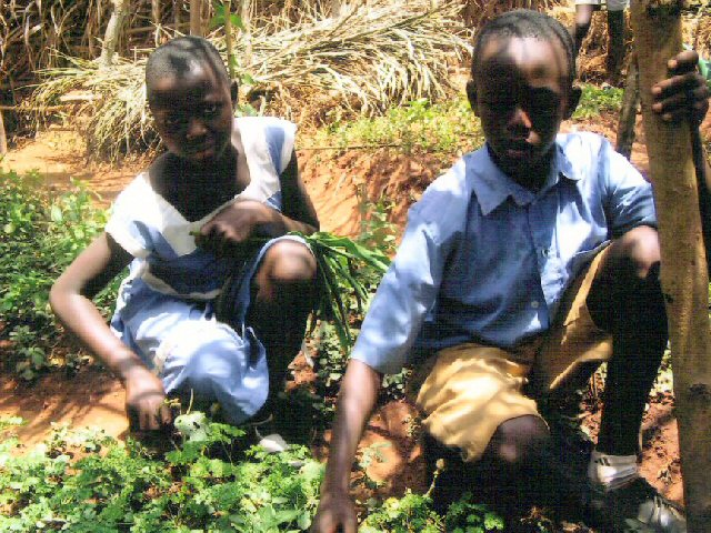 cameroon.shumas.environmental.education2