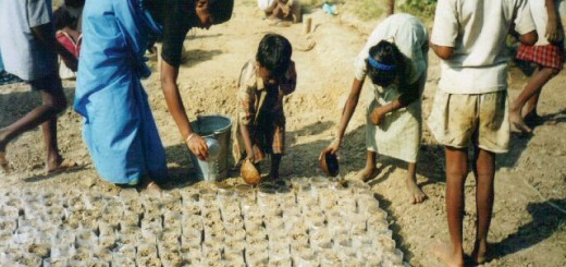 india.new.hope.rural.leprosy.trust. Green eye club. Childrens tree nursery40