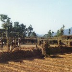 new-hope-tree-nursery-640