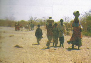 fioh.fund.pakistan.pvdp. Poverty alleviation in the Thar Desert. Carrying water in the Thar desert