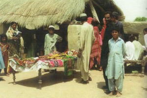fioh.fund.pakistan.pvdp. Poverty alleviation in the Thar Desert. Embroidery products