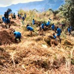 cameroon.shumas.school.environmental.education.programme. Clearing land to be used for gardening