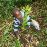 Children involved in tree planting